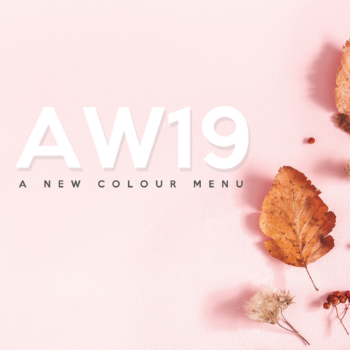 Muse of London launch new hair colour menu for AW19 3