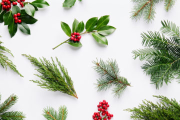 Green Queen Karine | A Sustainable Christmas 2