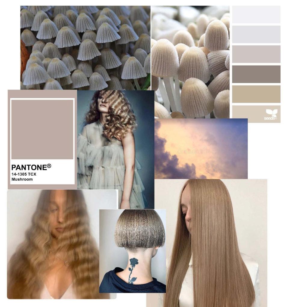 Brooks & Brooks introduces its latest trend - Mushroom Blonde 1